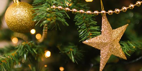 blur-branch-celebration-christmas-281618